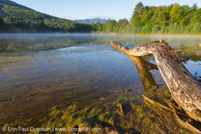 Thorne Pond Conservation Area in Bartlett, New Hampshire on a foggy morning.