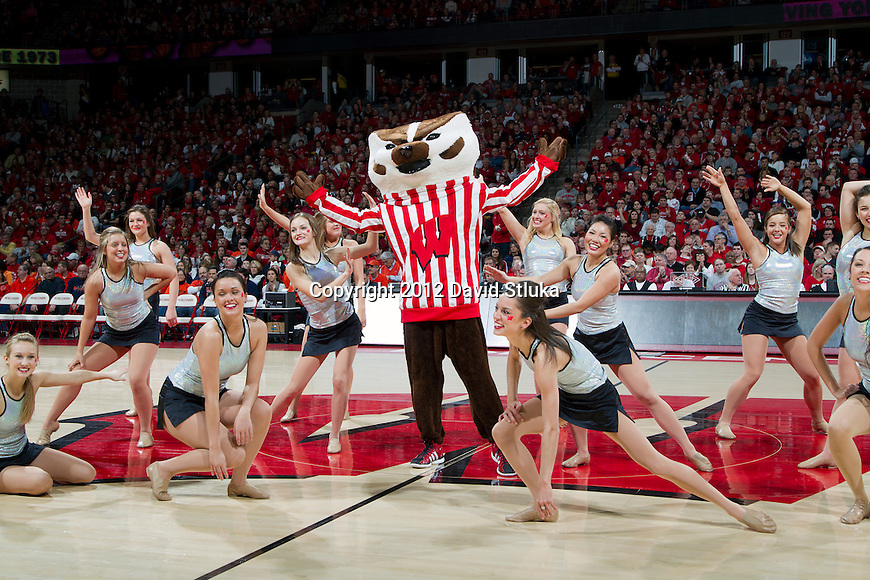 Wisconsin Badgers macot Bucky Badger performs with the dance team during a Big Ten Conference NCAA college basketball game against the Illinois Fighting Illini on Sunday, March 4, 2012 in Madison, Wisconsin. The Badgers won 70-56. (Photo by David Stluka)