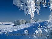 Marek, CHRISTMAS LANDSCAPES, WEIHNACHTEN WINTERLANDSCHAFTEN, NAVIDAD PAISAJES DE INVIERNO, photos+++++,PLMP0372Z2,#xl#