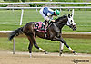 Chili Bean winning at Delaware Park racetrack on 6/7/14