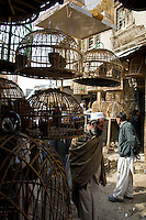 Street scene in the Kabul Bird market Afghanistan.