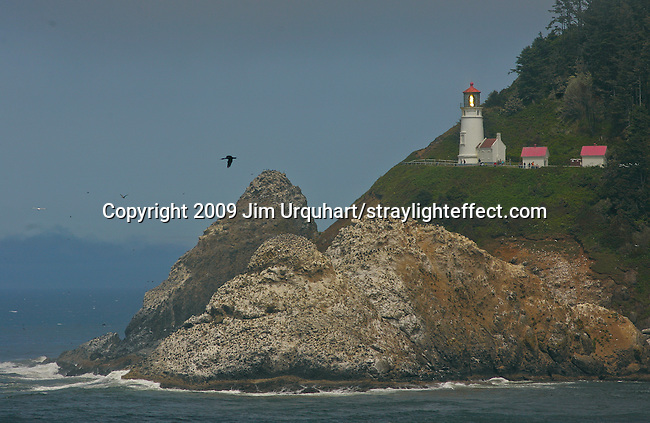 Heceta Head Light, a lighthouse on the Oregon coast along Pacific Coast Highway 101 north of Florence, Oregon. Jim Urquhart/straylighteffect.com 7/24/09