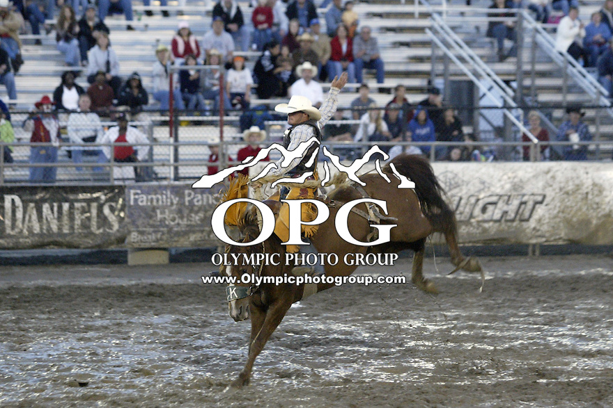 21 August 2008:  Denver Daines from Innisfail, Alberta Canada scored a 79 while riding the horse Wing Clipper in the saddle bronc riding competition at the Kitsap County Stampede Rodeo in Bremerton, Washington.