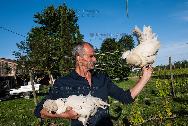Venice | Island of Sant'Erasmo | Orto di Venezia | Renzo, the farmer, with Padovana hens