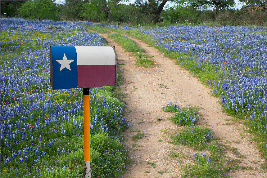 While driving the backroads of the Texas Hill Country, I came across this Lone Star mailbox leading down a dirt road - and surrounded by bluebonnets... Home Sweet Home for some lucky Texan!