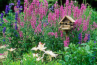 Fanciful log cabin birdhouse in colorful blooming flower garden,   summer  Missouri USA