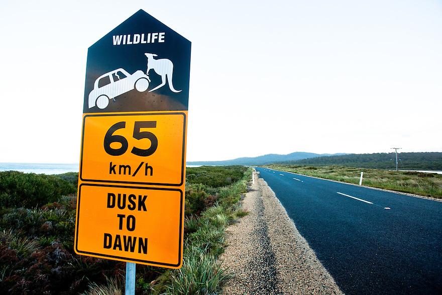 Wildlife warnig sign Tasmania