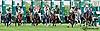 Bunestag winning at Delaware Park on 7/17/13