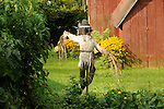 Backyard garden scarecrow, Hughesville, PA.