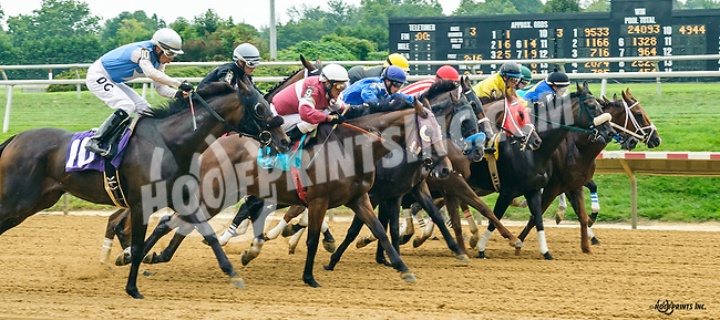 Whiskey Sour winning at Delaware Park on 8/25/16