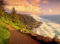 Trail at Cape Perpetua, Oregon