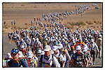 Marathon des Sables 2013