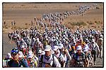 Marathon des Sables 2013 Portfolio