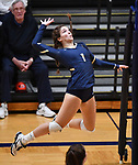 Althoff player Katie Wemhoener lines up a slam. Althoff lost to Minooka in the championship game of the O'Fallon Class 4A volleyball sectional at O'Fallon HS in O'Fallon, IL on November 6, 2019.<br /> Tim Vizer/Special to STLhighschoolsports.com