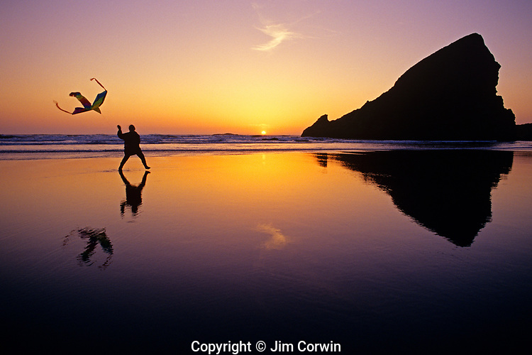 Kite Flying Along the Oregon Coast