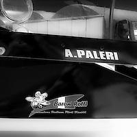 """WeFly team: L'unica pattuglia al mondo su velivoli ultraleggeri composta da piloti disabili, rappresentanti dei """"BARONI ROTTI""""..The only FLYING TEAM on microlight composed by disabled pilot in the world, representatives of the BARONI ROTTI"""