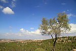 Israel, Shephelah, a view from Hurvat Eked