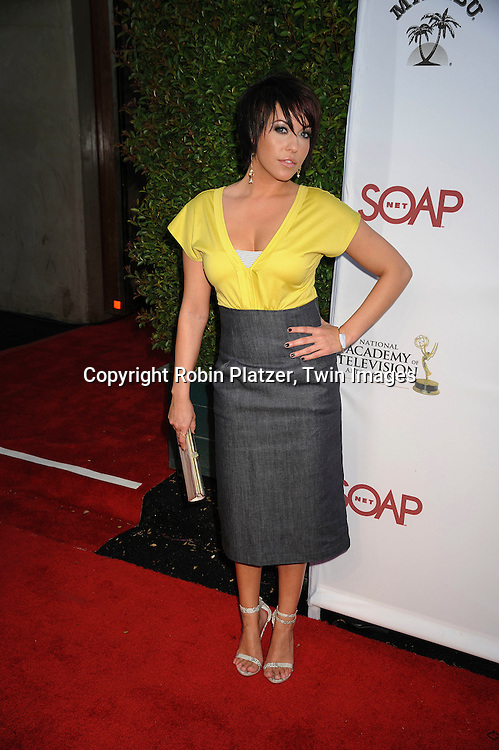 """Farah Fath..at SOAPNET'S """" Night Before Party"""" for the 2008 Daytime Emmy Award Nominees at Crimson and Opera in ..Hollywood, California on June 19, 2008.....Roibn Platzer, Twin Images"""