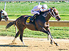 Manando winning at Delaware Park on 10/12/15