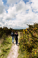 Walking through Ashdown Forest, Sussex, UK, May 20, 2017. Picturesque Ashdown Forest stretches across the countries of Surrey, Sussex and Kent, and is the largest open access space in the South East of England. It is famous as the geographical inspiration for the Winnie the Pooh stories and is popular with fans of the characters.