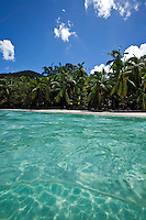 Split level image of Gibney Beach.Virgin Islands National Park.St John.U.S. Virgin Islands
