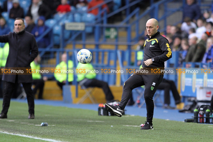 Norwich City managerAlex Neil kicks the match ball back during Sheffield Wednesday vs Norwich City, Sky Bet EFL Championship Football at Hillsborough on 4th March 2017