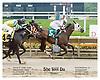 She Will Du winning at Delaware Park on 6/27/06