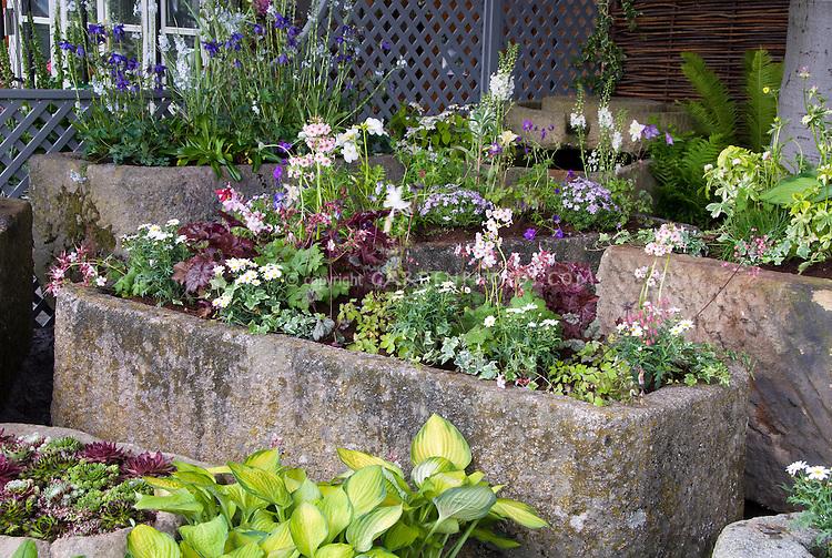 Trough container gardens of alpine plants under tree