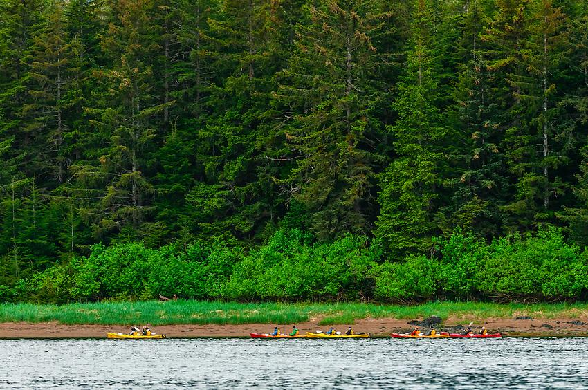 Sea kayaking, Freshwater Bay, Chichagof Island, Inside Passage, Southeast Alaska USA.