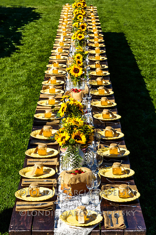 Outdoor table setting at Avila Valley Barn