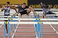 Sergey SHUBENKOV (ANA)  wins the race110m Hurdles Men<br /> Roma 06-06-2019 Stadio Olimpico, <br /> IAAF Diamond League Golden Gala<br /> Meeting Atletica Leggera <br /> Photo Cesare Purini / Insidefoto
