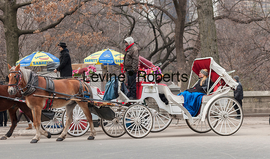 """Carriages and their horses are seen in the Central Park area in New York on Tuesday, December 31, 2013. Mayor-elect Bill De Blasio reiterated his position on dismantling the industry and working with the drivers to replace them with electric-powered """"antique"""" automobiles. Animal rights groups have been lobbying for the end of carriage horses for years claiming that they are inhumane. (© Ricard B. Levine)"""