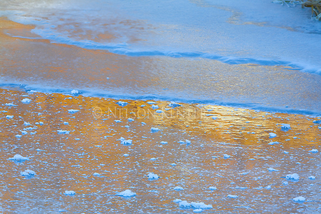 Golden light of sunrise reflecting off of ice on frozen stream