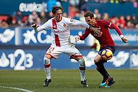 David Rodriguez (forward; CA Osasuna) and Raíllo (defender; RCD Mallorca)during the Spanish football of La Liga 123, match between CA Osasuna and  RCD Mallorca at the Sadar stadium, in Pamplona (Navarra), Spain, on Sunday, January 20, 2019.