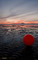 A commcercial fishing buoy sits dry during low tide on the beaches of Cook Inlet with Mount Redoubt in the background.