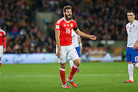 Joe Ledley of Wales is disappointed with a decision given against him during the FIFA World Cup Qualifying match between Wales and Serbia at the Cardiff City Stadium, Cardiff, Wales on 12 November 2016. Photo by Mark  Hawkins.