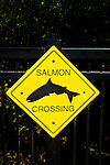 """""""Salmon Crossing"""" sign, Stanley Park, Vancouver, B.C, Canada."""