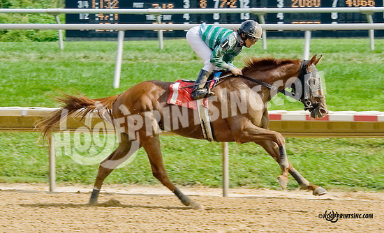 Same Time winning at Delaware Park on 9/4/14