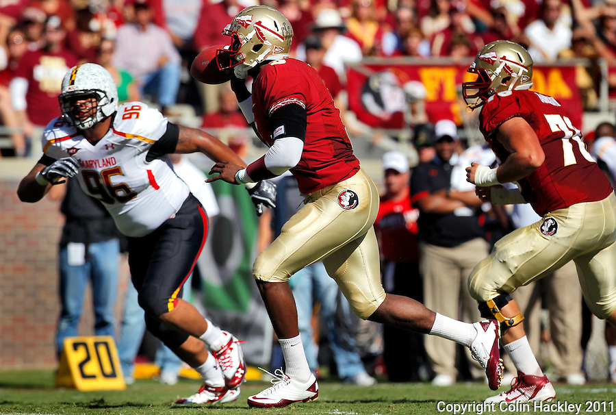 TALLAHASSEE, FL 10/22/11-FSU-MARY102211 CH-Florida State quarterback EJ Manuel fakes a pass and runs to the end zone for the Seminole's first touchdown against Maryland during first half action Saturday at Doak Campbell Stadium in Tallahassee. .COLIN HACKLEY PHOTO