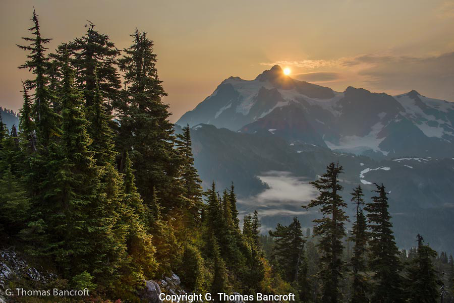 To be out in the mountains early in the morning and experience the sensation of seeing the sun rise over Mt Shuksan has to be a treasure I will remember forever.  We had come up the previous morning but the fog was so thick we could not even see any indication that the sun ever rose.  It was great on this morning when the fog drifted down into the valley a little while before the sun was scheduled to rise.  Truly a spectacular start to the day.