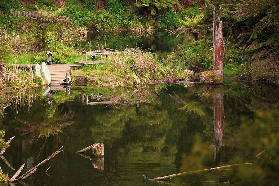Image Ref: CA606<br /> Location: Lake Elizabeth, Forrest<br /> Date of Shot: 20.10.18