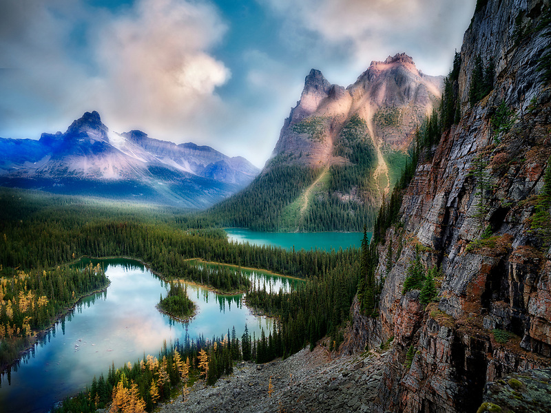 Mary's Lake and Lake O'hara with fall colored larch. Yoho National Park, Opabin Plateau, British Columbia, Canada