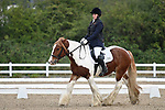 Stapleford Abbotts. United Kingdom. 05 October 2019. Class 1. Unaffiliated dressage championships. Brook Farm training centre. Essex. UK.~ 05/10/2019.  MANDATORY Credit Garry Bowden/SIPPA - NO UNAUTHORISED USE - 07837 394578