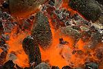 Preparing hot rocks for an Imu Pit