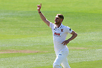Jamie Porter of Essex celebrates taking the wicket of Kyle Abbott during Essex CCC vs Hampshire CCC, Specsavers County Championship Division 1 Cricket at The Cloudfm County Ground on 21st May 2017