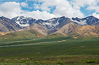 June 26, 2011, Polychrome Glaciers from Polychrome Pass, Denali National Park and Preserve, Alaska, United States.