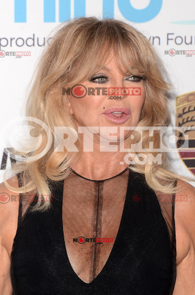 BEVERLY HILLS, CA - NOVEMBER 03: Goldie Hawn at Goldie's Love In For Kids at Ron Burkle's Green Acres Estate on November 3, 2017 in Beverly Hills, California. Credit: David Edwards/MediaPunch