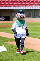 Cedar Rapids Kernels mascot Mr. Shucks walks to the outfield prior to a Midwest League game against the Clinton LumberKings on May 28, 2018 at Perfect Game Field at Veterans Memorial Stadium in Cedar Rapids, Iowa. Clinton defeated Cedar Rapids 4-3. (Brad Krause/Four Seam Images)