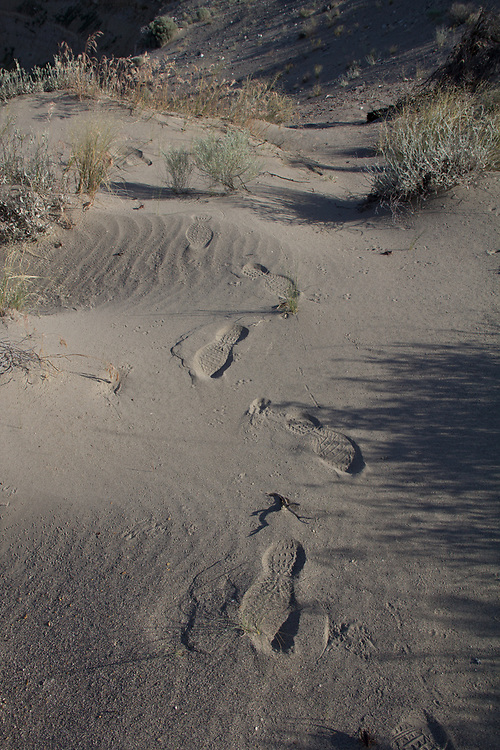Hanford Reach National Monument, Human footprints, sand dunes, Wahluke Slope, Columbia Basin, eastern Washington, Washington State, Pacific Northwest, USA, North America,