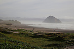 Morro Rock, a more than 500 foot volcanic plug, can be seen near Toro Creek along Highway 1 between Cayucos and Morro Bay, California December 21, 2014.